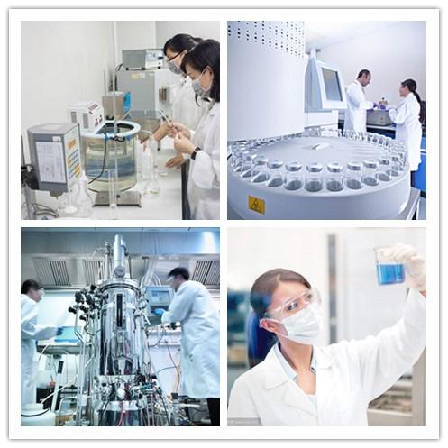 China API 99% Pure Premium Grade Supplement 10% Theobromine