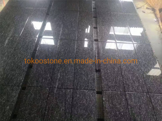 Granite Stone Gneis Silver Grey Tile Slab for Floor/Flooring/Wall/Paving/Step/Staircases (G377 G302 G341 G375 G383 G399 G343 G354 G371) pictures & photos