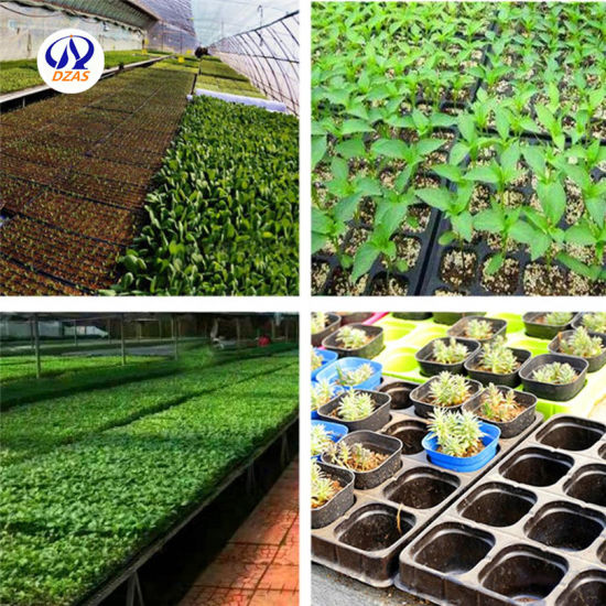 28 Cells Plastic Vegetable Plant Grow Seedling Bed Trays