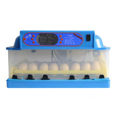 96PCS Chicken Egg Incubator Full Automatic Mini Egg Incubator pictures & photos