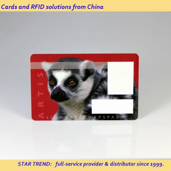 photo relating to Printable Membership Cards named Re-Printable Custom-made Dimensions and Symbol Plastic Loyalty Card for Subscription