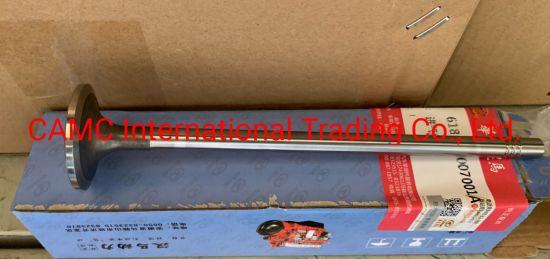 CAMC Engine Parts 618da1007001A Valve Intake