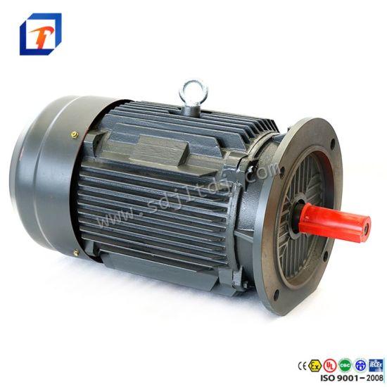 Jinlite 110V Adjustable Speed Motor