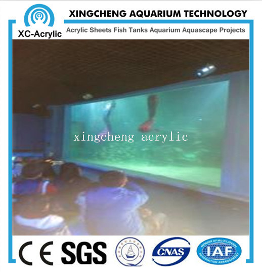 Aquaria Acrylic Material Window Wall Project Price pictures & photos