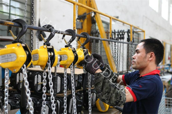 3t Hand Pulley Chain Manual Hoist with Best Price pictures & photos