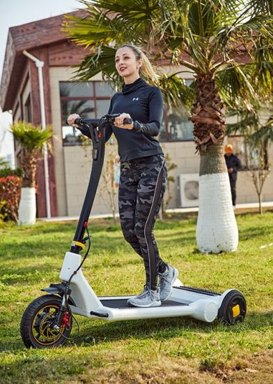 Electric Popular Stroller Scooter/250W E Scooter