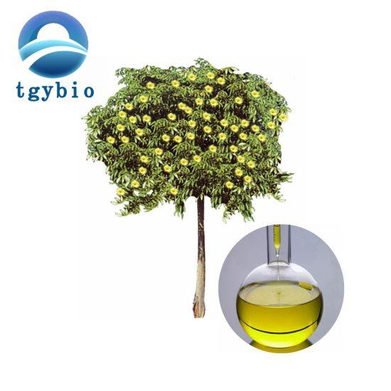 Top Quality Cinnamon Leaf Oil/ Cinnamon Leaf Essential Oil