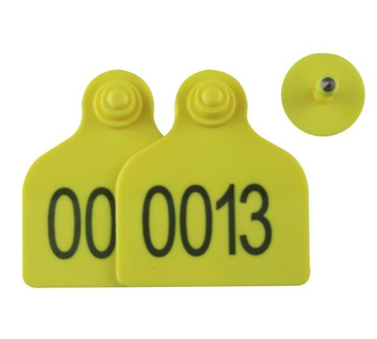 78*56mm Yellow Plastic Sheep Ear Tags for Sheep Identification pictures & photos
