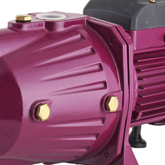 Best Price Italy 220V Electric Self Priming Jet Water Pump pictures & photos
