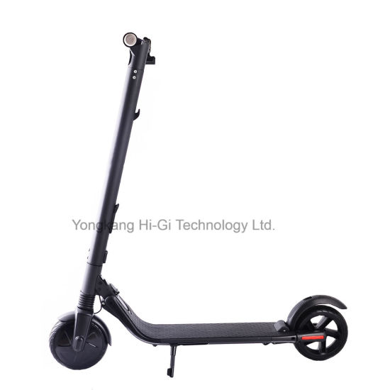 China Manufacture Hot Selling 350W Ninebot Electric Scooter with Extra Battery
