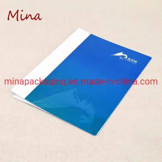 2019 Cheap New A4 Size Plastic PP Products Stationery Types of Office