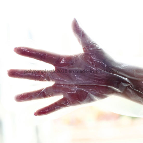 Household Disposable Gloves for Food Processing and General Purpose