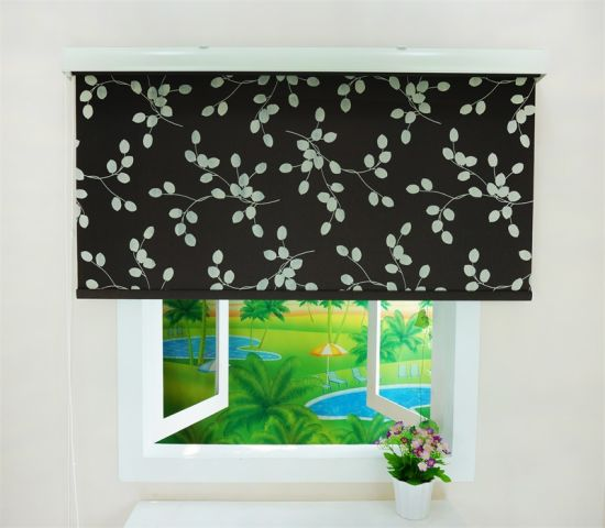 dove roller bedrooms window blind from vertical tranquility blinds sevilla pin blackout