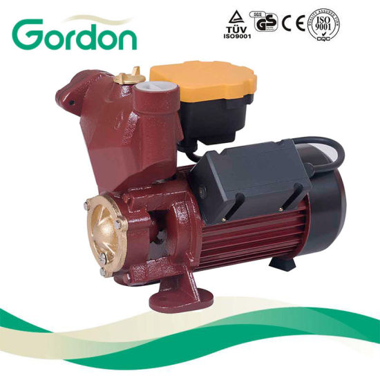 Electric Pool Copper Wire Self-Priming Auto Pump with Pressure Gauge pictures & photos