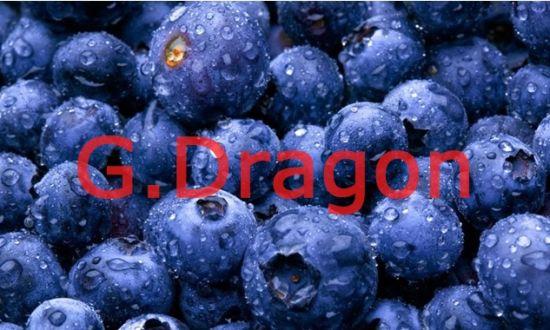 IQF (Individual Quick Freezin) Wild Organic Blueberries