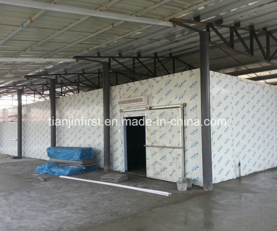 Cold Room/Cold Storage, Air Cooling Frozen Chicken Blast Freezer pictures & photos