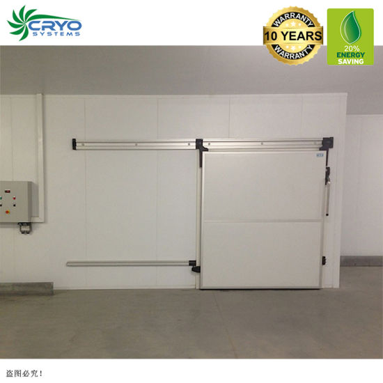 Hass Avocado King Durian Chicago Cold Storage Cold Room Refrigeration Calculation Cold Storage Server