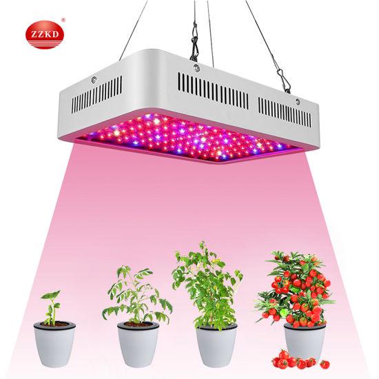 High Power 300W 400W 600W 1000W LED Grow Light Quantum Full Spectrum Greenhouse LED Plant Grow Light Full Spectrum with UV IR Switch