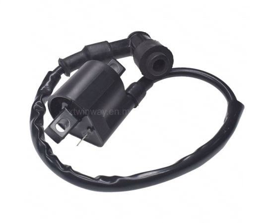 Ww-8306 Cg125 12V Motorcycle Ignition Coil Water Proof Motorcycle Parts