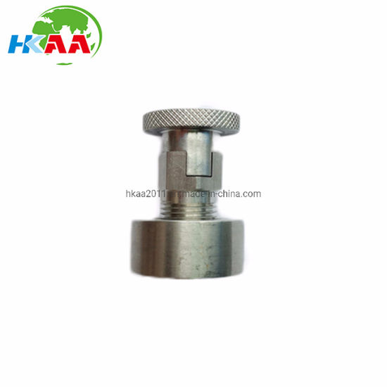 Non-Standard Custom Design SS304, 316L, 317L, Ss410 Carriage Bolt with Round Nut