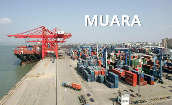 Ocean Shipping Transportation Service From Guangzhou to Muara pictures & photos