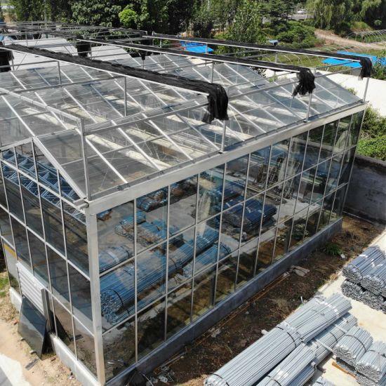 Multi-Span Venlo Glass Greenhouse for Flower Vegetable