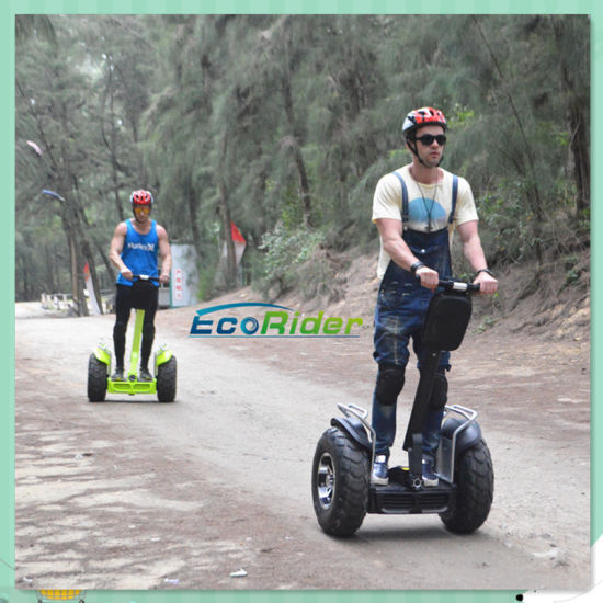Self Balance and Stand Upright Scooter 19 Inch Electric Chariot with Handle Bar pictures & photos