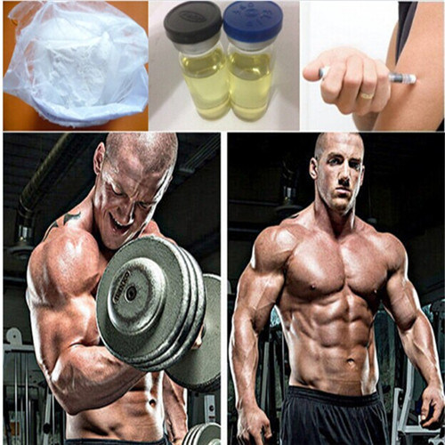 Injectable Bold C Finished Oil Man Bodybuilding
