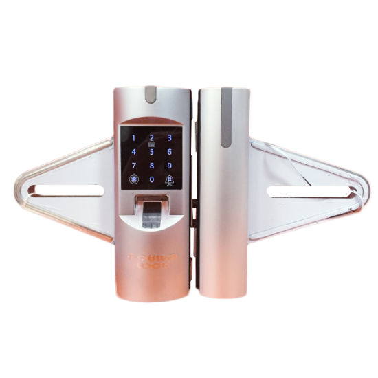 Best of High Security Fingerprint Digital Card Key Glass Door Lock Top Design - Popular high security door locks Simple Elegant
