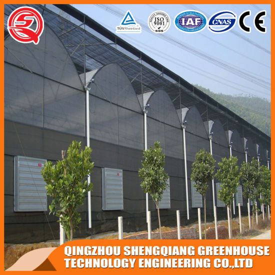 2020 New Agriculture Productive Multi-Span Plastic Film Garden Greenhouse Hydroponic
