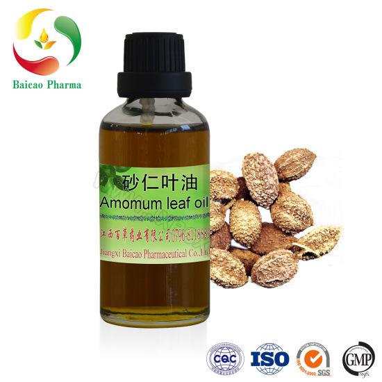 Factory Price Natural Wholesale Bulk Natural Amomum Leaf Oil