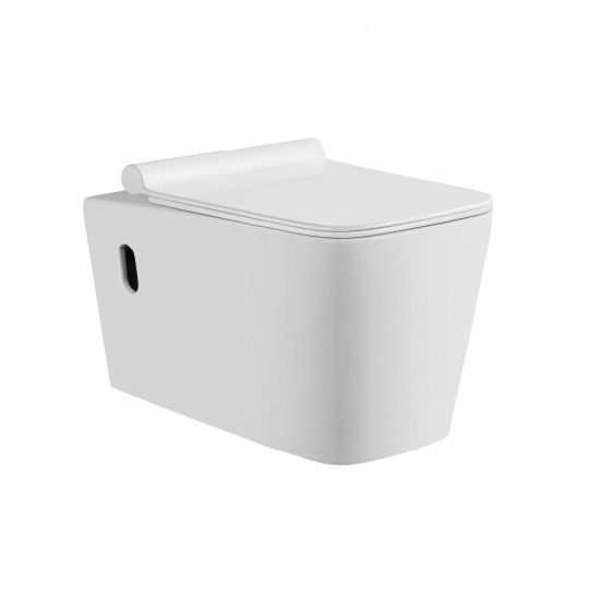 2112 Wall Hung Toilet with Concealed Cistern