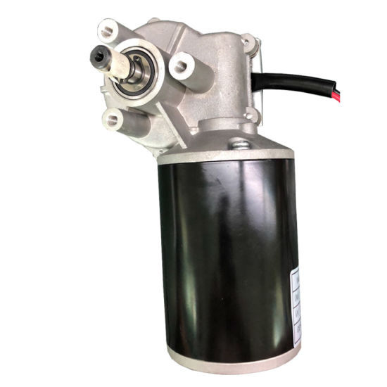 Customize 15nm Torque DC Gear Motor 12V for Auto Door Lifting System
