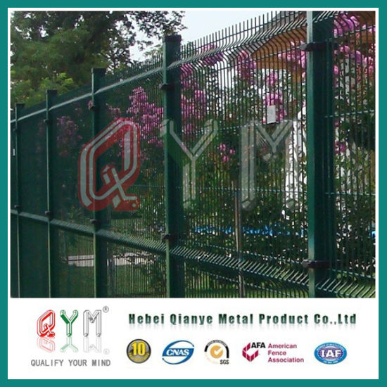 China 50X100mm Euro Fence/Galvanized Welded Wire Mesh Fence - China ...