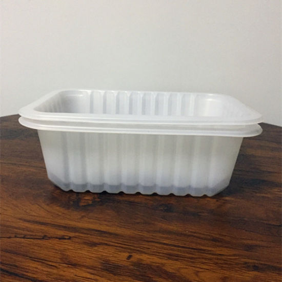 Disposable Plastic Food Packaging Box pictures & photos