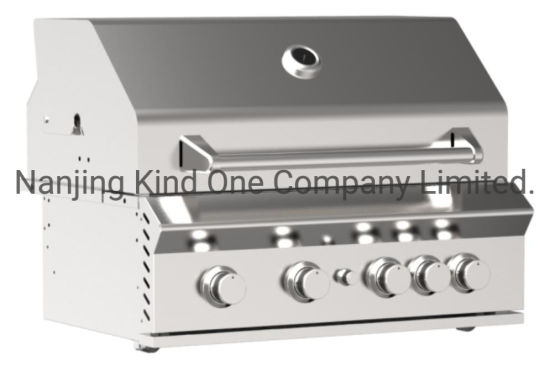 Gas Burner Party Home Use Indoor Outdoor Gas Barbecue Grill