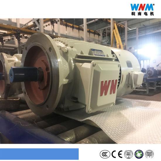 Variable Frequency VFD Control Three Phase AC Eletcric Motor Yxvf160 4kw 5.5kw 7.5kw 11kw 15kw 18.5kw Wnm Motor