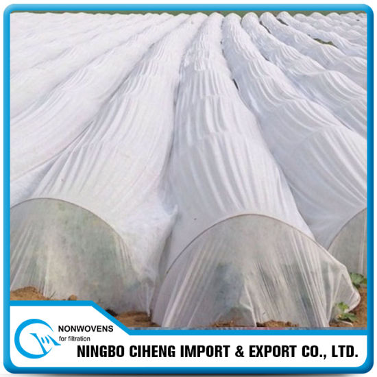 Winter Protection Greenhouse Cover PP Spunbond Agriculture Nonwoven Fabric