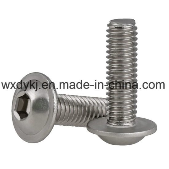 Stainless Steel 304 Flange Hex Socket Cap Screw with Washer Head pictures & photos