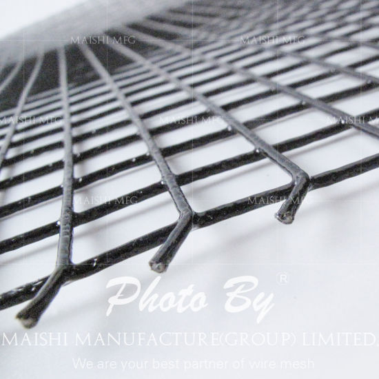 China Power Coated Welded Wire Mesh - China 1/2\