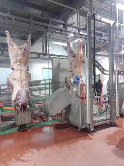 Factory-Direct Supply Stainless Steel Beef Tripe Cleaning Washing Machine