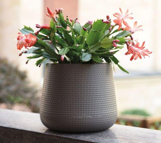 Self-Storage Plastic Flower Pot (KD2211-KD2214)