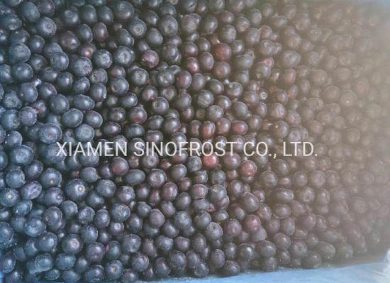IQF Blueberries, Frozen Blueberries, IQF Bilberry, Frozen Bilberries, . IQF Cultivated Blueberries, Frozen Cultivated Blueberries, IQF Wild Blueberries