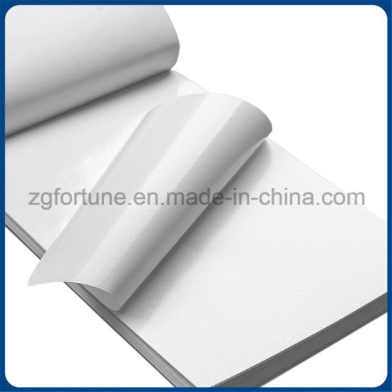 Hot Sale Self Adhesive Vinyl Factory Price Good Quality pictures & photos