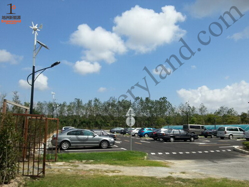 Wind-Solar Hybrid IP65 LED Street Light pictures & photos