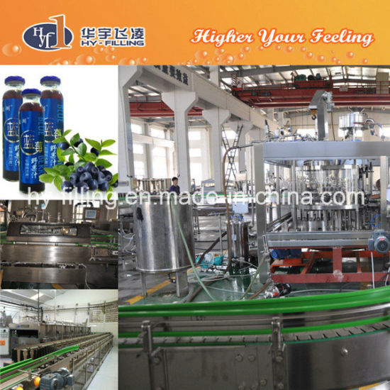 Glass Bottle Hot Filling Beverage Machine pictures & photos