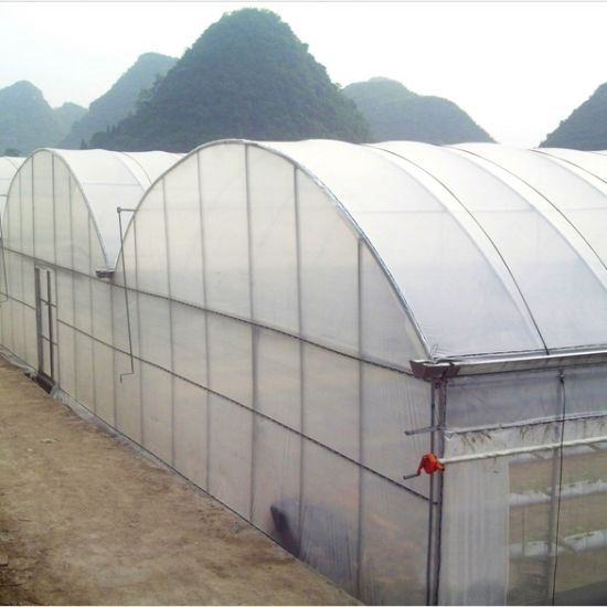 The New High Tech Agricultural Multi-Span Film Green House pictures & photos