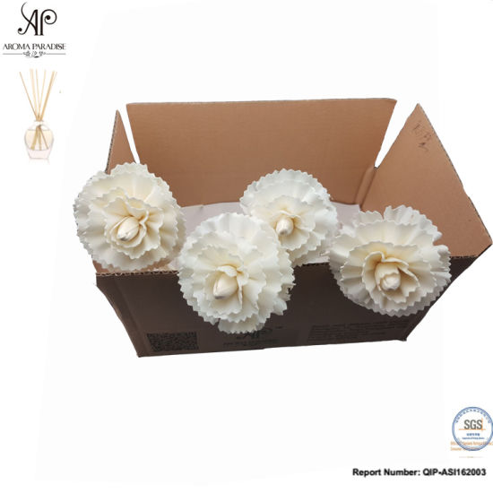 Ap Reed Diffuser DIY Rattan Dry Sola Flower 8mm Dianthus Caryophyllus 6PCS/Box pictures & photos