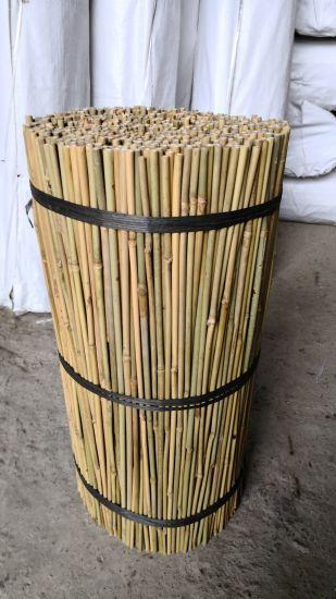Farming Nature Bamboo Poles