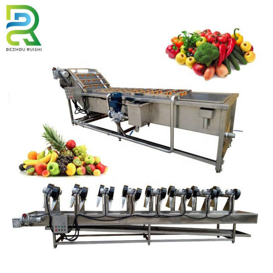 Orange Onion and Other Fruit Vegetable Washing Drying Waxing Machine